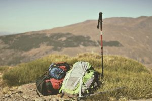 Two backpacks laying on the ground in tall grass