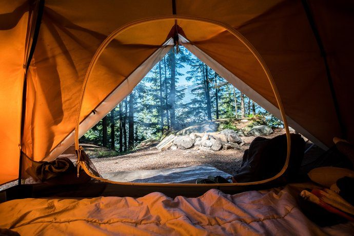 Looking at the wilderness through the door of a tent