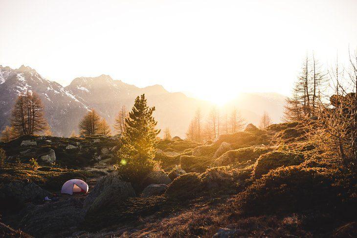 tent in the woods with sun rising behind it