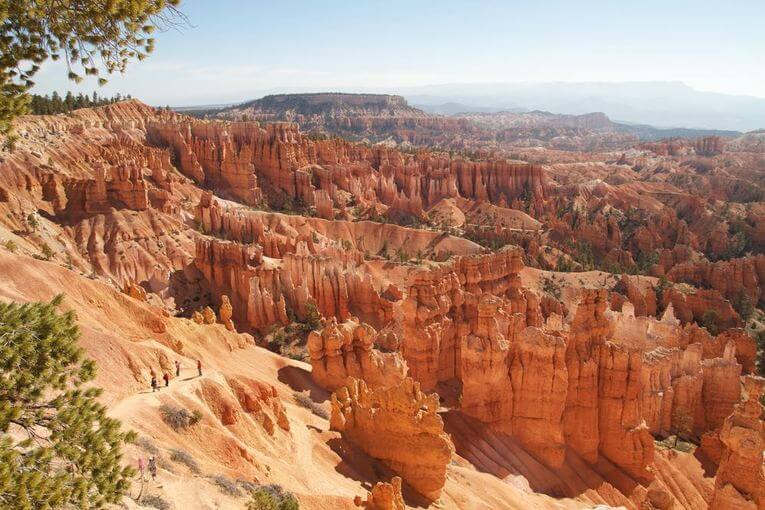A canyon tall red and orange rocks protruding from the earth