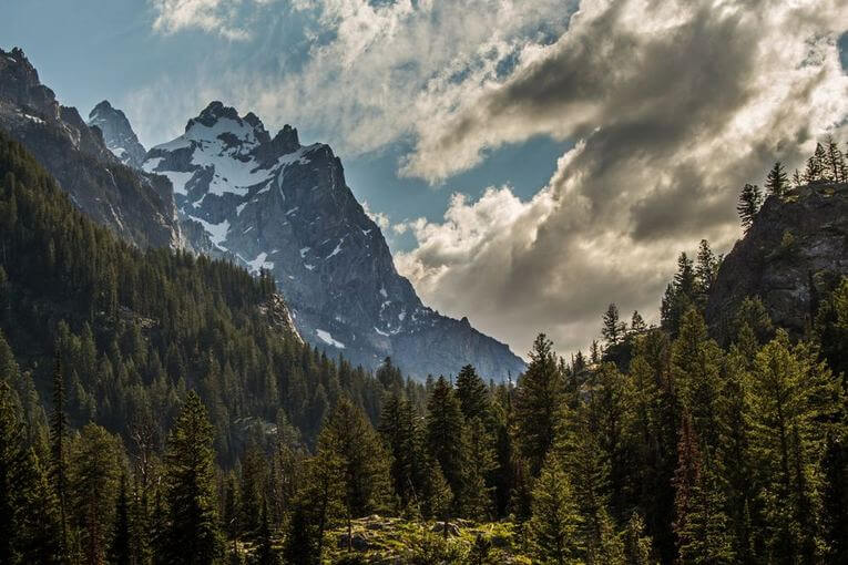 A forest with a large mountain behind it and clouds in the sky