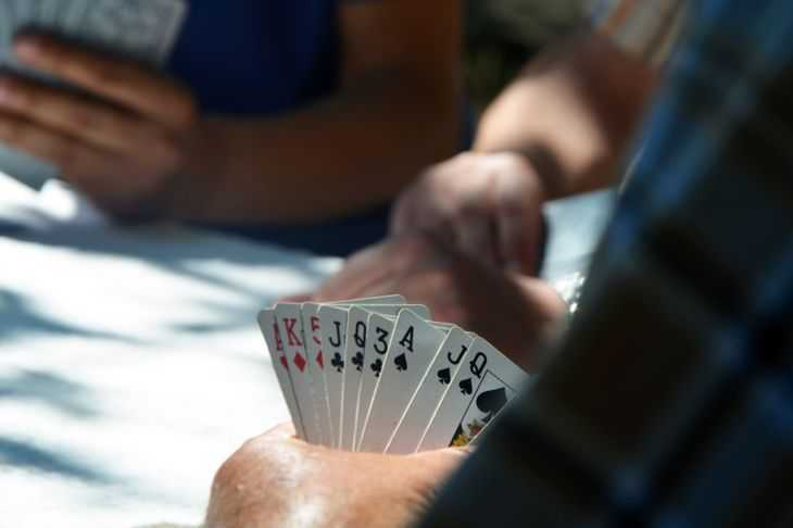 People playing cards sitting around a table
