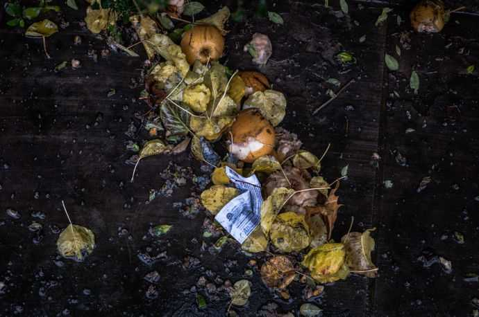 Piece of paper garbage on a pile of leaves and old apples