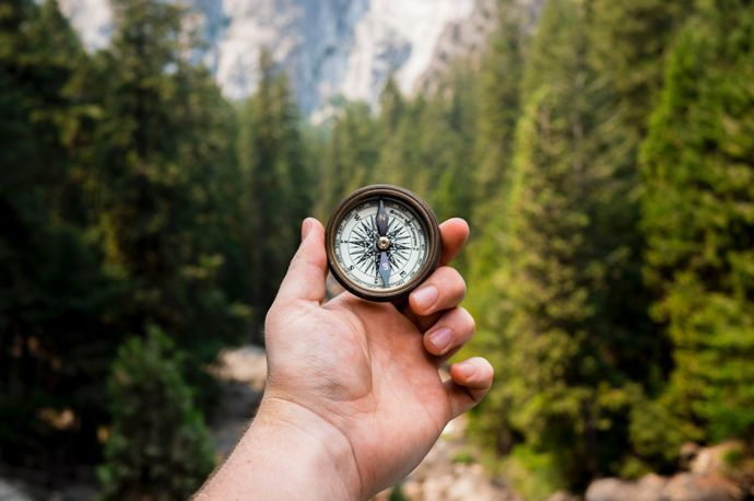 A hand holding a compass with the forest in the background