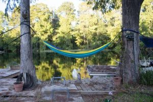 A hammock sitting on a dock between two trees