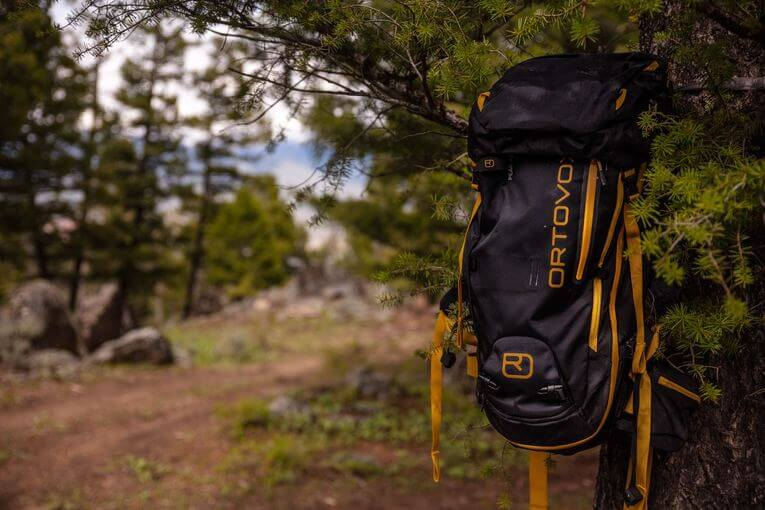 A backpack hanging from a pine tree